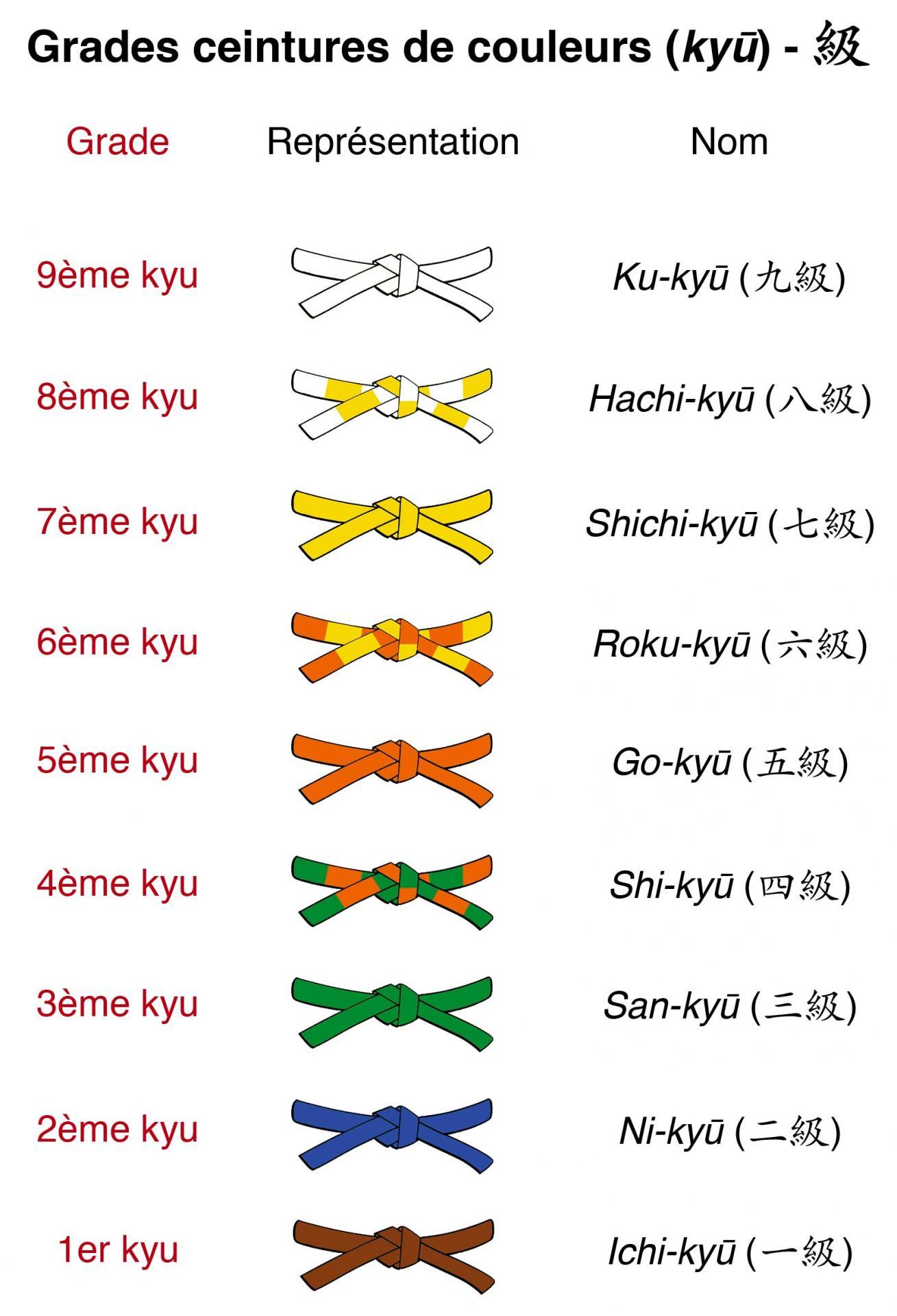 ceinture de judo