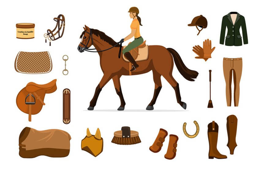 equipement equitation