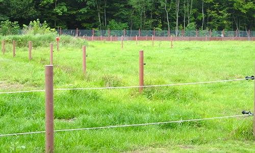 piquet cloture chevaux
