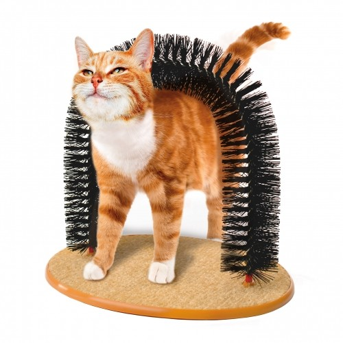 accessoire chat