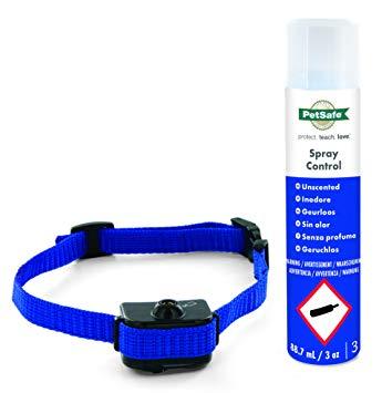 collier anti aboiement spray petit chien