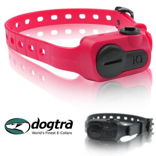 collier pour chien anti aboiement