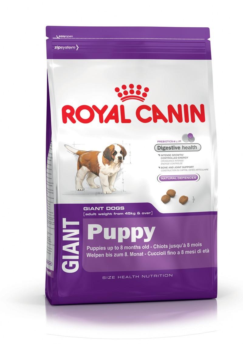 croquette chien sans cereales royal canin