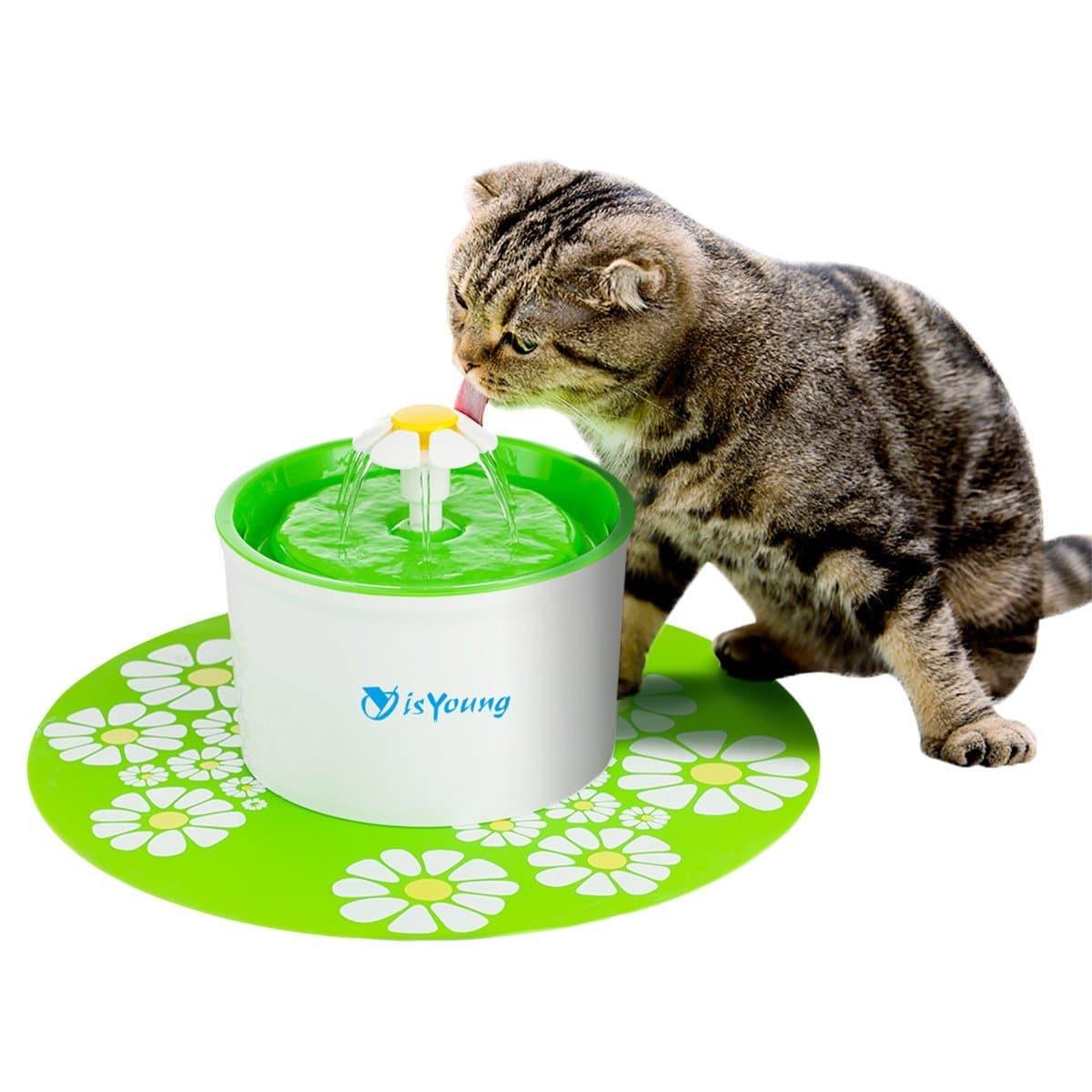 fontaine a eau pour chat sans fil