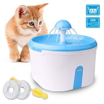 fontaine d eau pour chat