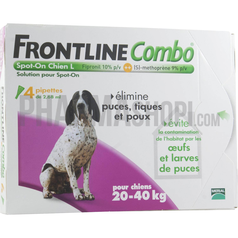 frontline chien