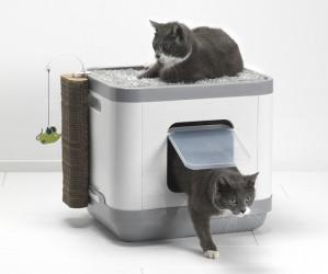 grande litiere chat