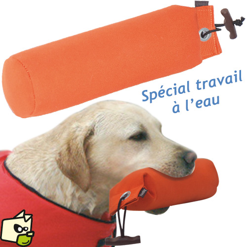 objet pour chien